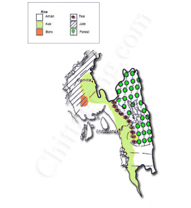 chittagong-agriculture-bangladesh1